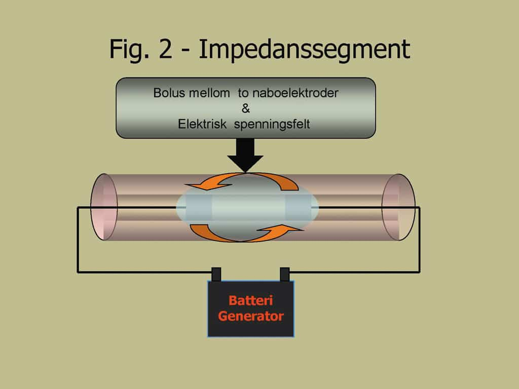Kett-Fig2
