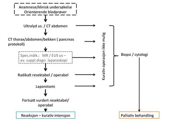 nasjonalt-handlingsprogram-med-retningslinjer-for-utredning-behandling-og-oppfolging-av-pancreaskreft.pdf-21